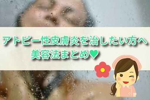 f:id:cocosuke1014:20191204115307j:plain