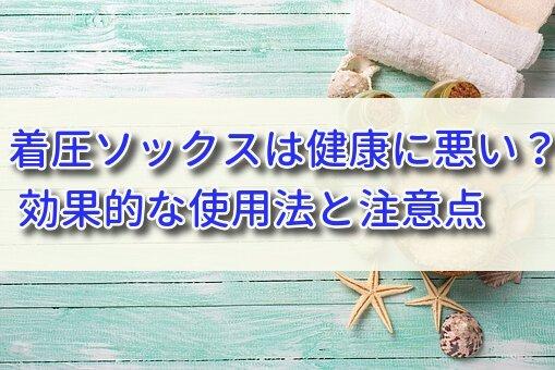 f:id:cocosuke1014:20191204122604j:plain